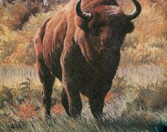 "European Bison ""Buy one, choose another free"" bison, buffalo, wildlife, animal prints, bird prints, wildlife prints, animals, birds"