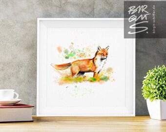Cheeky Fox – Beauty on Four Paws