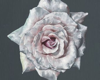 Rose in Bloom - Art Print