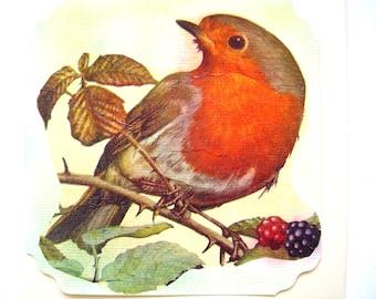 Post card and matching envelope nice Robin and blackberries.
