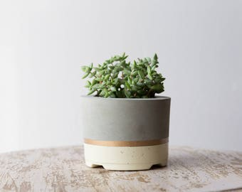 Mother's Day Gift for Her, Large Concrete Planter, Ivory & Gold