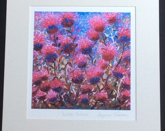 Scottish Thistles/Mounted & signed Gicilee print, Scottish art, Scottish print, Scottish gifts, thistle art, thistle gifts, thistle prints