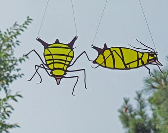 Stained Glass Suncatcher - Entomologist Gift - Aphis nerii - Aphid Suncatcher -Insect Gift