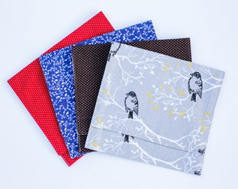 "Extra Large Pouches for Language/Vocabulary Cards - holds up to 6""x7"" cards"