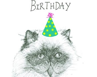 Happy Birthday kitteh Cat- Amber Connolly -