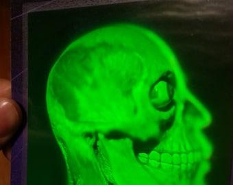 1993 Polaroid 3D Hologram Sticker Brain Skull Skeleton Anatomy