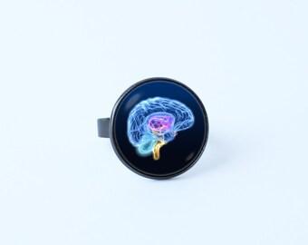 Human anatomy brain ring Neuroscience ring Brain ring Brain jewelry Brain surgeon Anatomical jewelry Gift for nurse Anatomy jewelry Neuron
