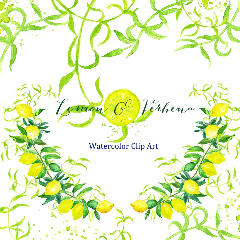 Lemon & verbena watercolor clipart hand drawn. Bright wedding, light ...