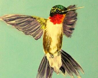 Original Hummingbird acrylic hummingbird art small paintings ruby throated hummingbird