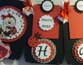Ladybug Photo Happy Birthday Banner/First year/ From Newborn to Twelve Months/ First Birthday/ Ladybug Banner
