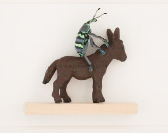Real Insect Art Taxidermy Oddity Beetle Riding Donkey