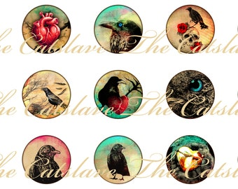 Crow Raven Magnets Pins, Gothic Magnets, Gift Sets, Party Favors