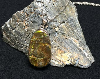 An Awesome Ammolite Pendant (1-D)