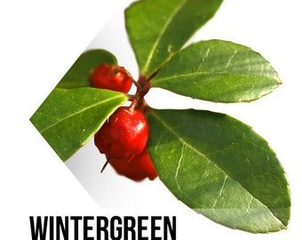 Wintergreen scented wax melts, scented wax melts, soy wax melts, soy melts, wax melts, wax melt, wax tart, soy wax tart