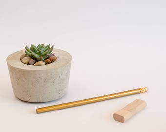 Concrete Planter, Succulent Planter, Handmade, Home Decor, Cement Planter, Includes Succulent, Gift Idea