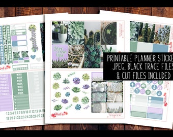 Succulent Photography Happy Planner Kit PRINTABLE Planner Stickers | Planner Stickers, Digital, for use in Erin Condren Planners, HP Kit