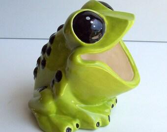 Frog Scrubby Holder Tree Frog Retro Home Sponge holder Brillo pad holder Ceramic Frog Scrub Holder Frog Gift Poison Dart Frog