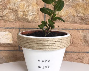 We're mint to be | Funny pot plant gift | with a pun | wedding | engagement | present