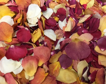 Autumn Wedding Petal. 10 cups. Rose Petals. Flower Petals. Wedding Confetti. Fall Decorations. Real Rose Petals. Freeze dried Petals. USA