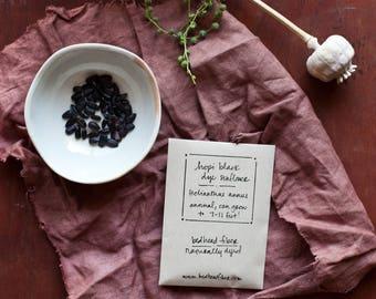 Hopi Black Dye Sunflower Seeds (Organic)