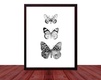 Moth Art Instant Download, Printable Digital Download Moth Print, Oddities Faux Taxidermy Bohemian Curiosities, Butterfly Art Print