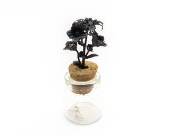 Silver Ecballium Elaterium flower Bottle