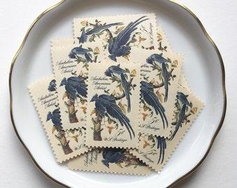 10 Vintage Unused Postage Stamps US // John James Audubon, Blue Birds // 5 cents // 1963