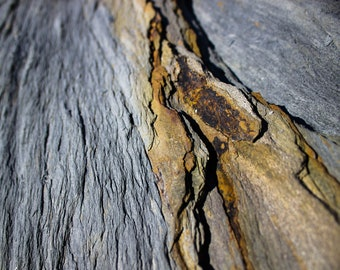 Rock Grain Macro photography