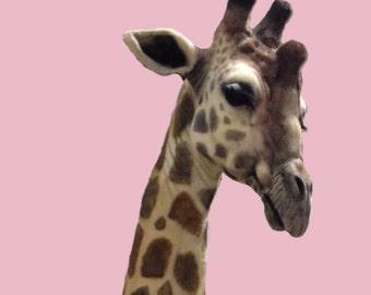 Faux Taxidermy Giraffe