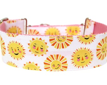"""Sunshine Dog Collar 2"""" wide Martingale Dog Collar for Large Breed Dogs"""