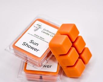 Sun Shower Scented Wax Melt