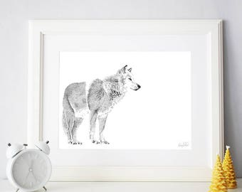 A3 wolf art //Wolf Print // Illustration of an arctic wolf // Wolf Drawing // Hand Drawn // Stippling Drawing