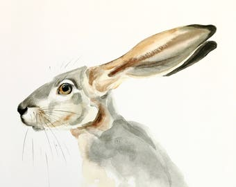 LIMITED EDITION 1/25 Jack Rabbit  Watercolor PRINT