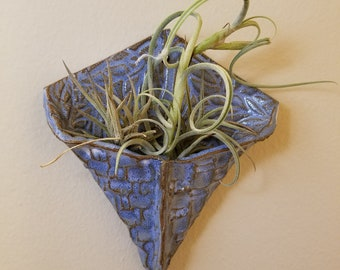 Wall Hanging Air Plant Holder