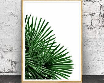 Palm Leaf Print, Palm Leaf Wall Art, Palm Tree Decor, Tropical Print, Tropical Wall Art, Tropical Decor, Tropical Palm Leaf, Wall Art, Print