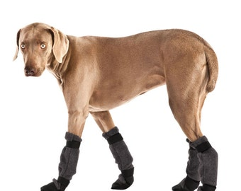 WEIMARANER Dog Booties, Winter Boots, Waterproof Dog Shoes, Dog Boots, Snow Boots, Dog socks, Dog Accessories, Dog Clothing, Winter Clothes