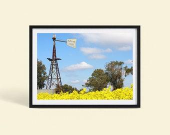 Australian Country Wall Decor | Country Windmill | Canola Field | Australia Nature Landscape | Photography Print | Poster Print | Art Print