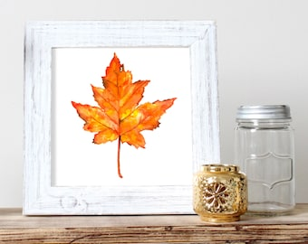 Maple Leaf Watercolor