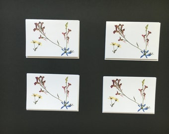 "Set of 4 Cards - ""Morning Dance"" Card Prints"