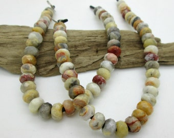 Natural Crazy Lace Agate Faceted Rondelle Beads, 8x5mm (36)