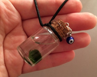 MY PET MARIMO Terrarium Necklace contains Mini Living Plant Live Moss Ball Zen Lucky Evil Eye Amulet