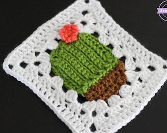 Succulent Cacti Crochet Granny Square Pattern pdf instant digital download