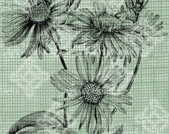 Digital Download Asters Antique Flower Illustration  c. 1900, digi stamp, digis, digital stamp, Elegant, and beautiful