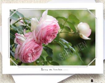 264. Romantic English...