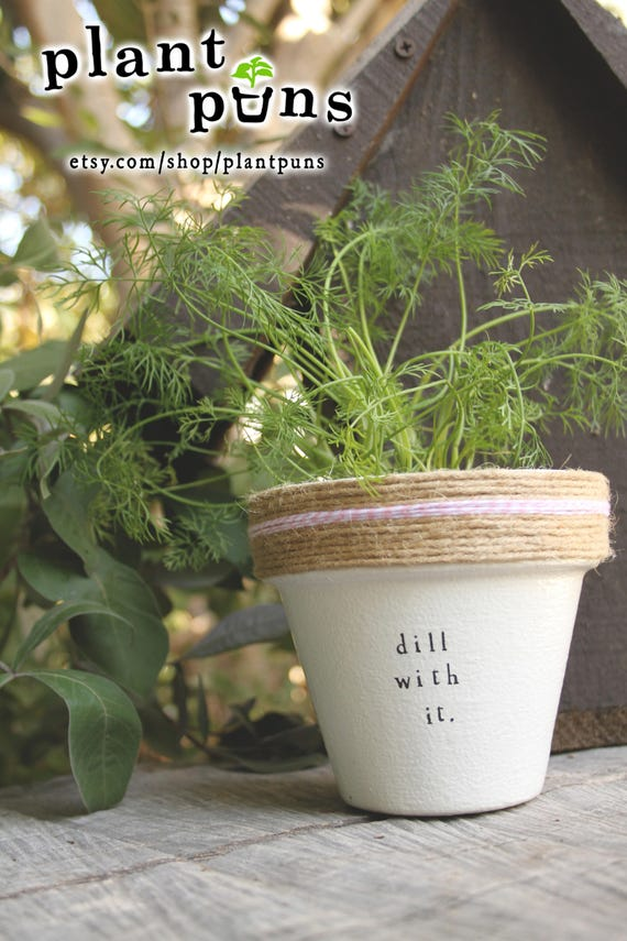 4 Dill With It Indoor Herb Garden Cute Planter Plant