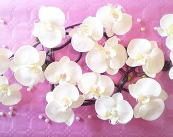 Composition cover orchids like to customize