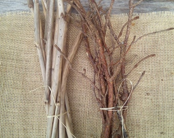 Twigs for craft, natural branches, set of different branches rustic wooden florist natural craft supplies