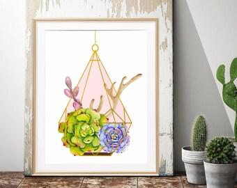 Succulent Plants, Geometric Terrarium, Botanical Wall Art, Minimalist Art, Pink and Gold, Cactus Nursery, Hanging Terrarium, Himmeli
