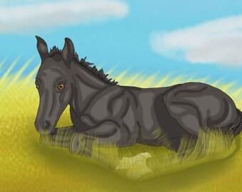 Foal Of Coal