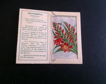 Kensitas Wix Small Silk Flower  silk Montbretia  B 1930s cigarette cards, if you like any other items in my shop, combined postage